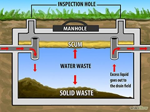 What is the easiest and cheapest way to maintain a septic tank system in United Arab Emirates(UAE)?